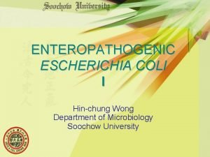 ENTEROPATHOGENIC ESCHERICHIA COLI I Hinchung Wong Department of