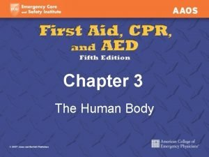 Chapter 3 The Human Body The Human Body