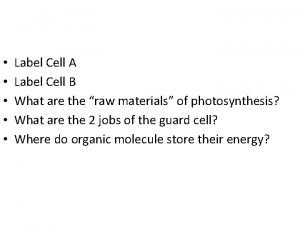 Label Cell A Label Cell B What are