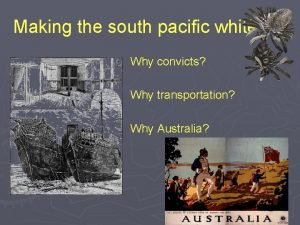 Making the south pacific white Why convicts Why