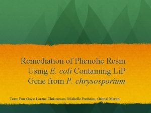 Remediation of Phenolic Resin Using E coli Containing
