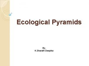 Ecological Pyramids By K Sharath Deepika Ecological Pyramids