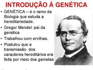 INTRODUO GENTICA GENTICA o ramo da Biologia que