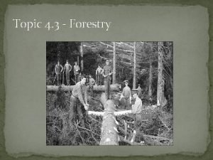 Topic 4 3 Forestry Forestry 3 6 million