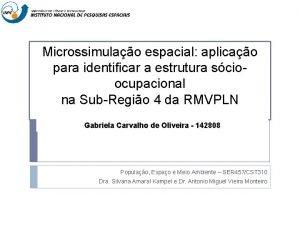 Microssimulao espacial aplicao para identificar a estrutura scioocupacional