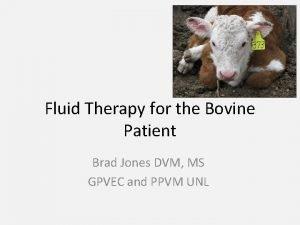 Fluid Therapy for the Bovine Patient Brad Jones