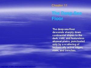 Chapter 11 The DeepSea Floor The deepsea floor