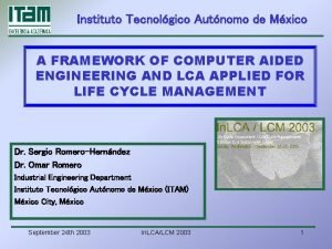 Instituto Tecnolgico Autnomo de Mxico A FRAMEWORK OF