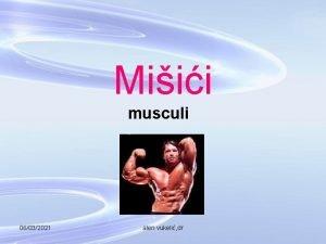 Miii musculi 06032021 alen vukeli dr 06032021 alen
