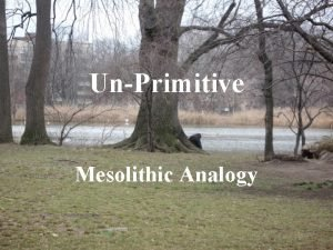UnPrimitive Mesolithic Analogy Aims and objectives Discussion of