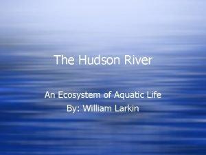 The Hudson River An Ecosystem of Aquatic Life