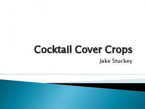 Cocktail Cover Crops Jake Stuckey Cover Crops Are