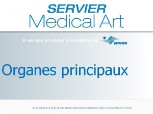 A service provided to medicine by Organes principaux