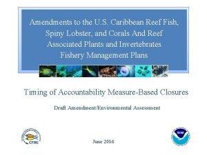 Amendments to the U S Caribbean Reef Fish