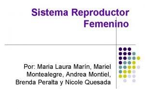 Sistema Reproductor Femenino Por Maria Laura Marn Mariel