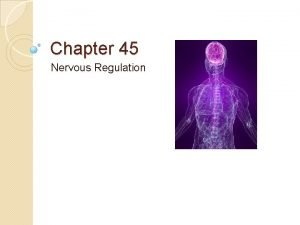 Chapter 45 Nervous Regulation Peripheral Nervous System PNS