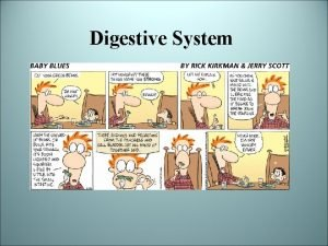 Digestive System Why do we eat Nutrients serve