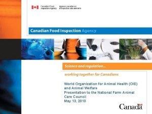 World Organization for Animal Health OIE and Animal