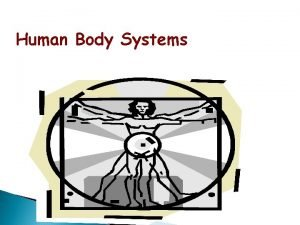 Human Body Systems The Human Body The organs