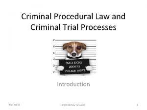 Criminal Procedural Law and Criminal Trial Processes Introduction