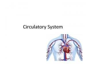 Circulatory System Structures and Functions of the CIRCULATORY