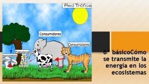 6 bsico Cmo se transmite la energa en