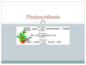 Photosynthesis Photosynthesis Which of the following is a