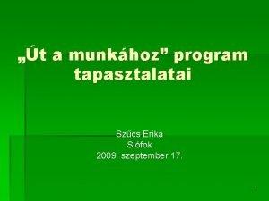 t a munkhoz program tapasztalatai Szcs Erika Sifok