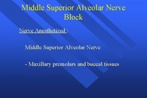 Middle Superior Alveolar Nerve Block Nerve Anesthetized Middle