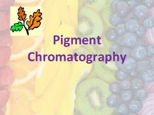 Pigment Chromatography Plant leaves contain different color pigments