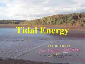 Tidal Energy Energy from the moon Tides generated