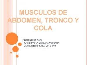 MUSCULOS DE ABDOMEN TRONCO Y COLA PRESENTADO POR