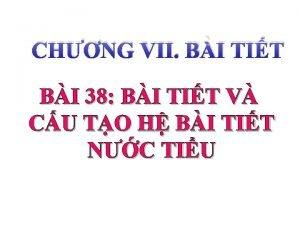 CHNG VII BI TIT BI 38 BI TIT