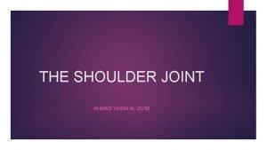 THE SHOULDER JOINT AHMAD YASIN ALZUBI Shoulder anatomy