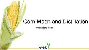 Corn Mash and Distillation Producing Fuel Ethanol Ethanol