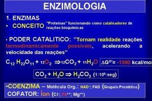 ENZIMOLOGIA 1 ENZIMAS CONCEITO Protenas funcionando como catalisadores
