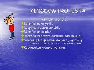 KINGDOM PROTISTA Ciriciri protista Bersifat eukaryotik Respirasi secara