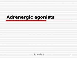 Adrenergic agonists Saja Hamed Ph D 1 adrenergic