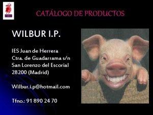 CATLOGO DE PRODUCTOS WILBUR I P IES Juan