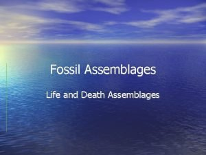 Fossil Assemblages Life and Death Assemblages An early