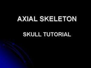 AXIAL SKELETON SKULL TUTORIAL Anterior Skull frontal bone