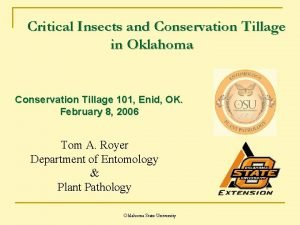 Critical Insects and Conservation Tillage in Oklahoma Conservation