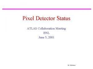 Pixel Detector Status ATLAS Collaboration Meeting BNL June