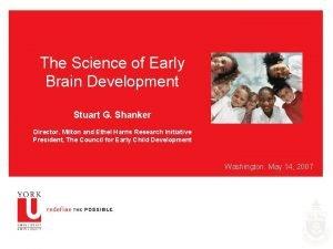 The Science of Early Brain Development Stuart G