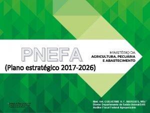 PNEFA Plano estratgico 2017 2026 Delegado do Brasil