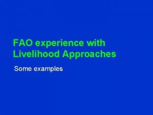 FAO experience with Livelihood Approaches Some examples Development
