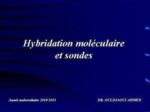 Hybridation molculaire et sondes Anne universitaire 20102011 DR