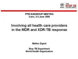 PPM SUBGROUP MEETING Cairo 3 5 June 2008