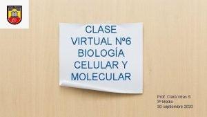 CLASE VIRTUAL N 6 BIOLOGA CELULAR Y MOLECULAR