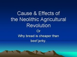 Cause Effects of the Neolithic Agricultural Revolution Or